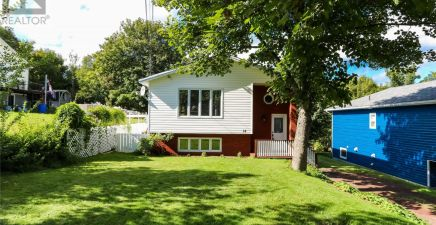 Topsail, NL Real Estate
