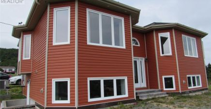 Colliers, NL Real Estate