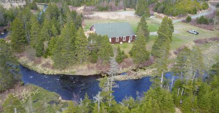 South River, NL Real Estate