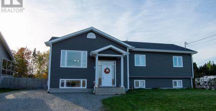 Glenwood, NL Real Estate