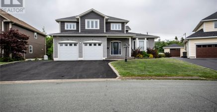 View 144 properties in Mount Pearl, NL with an average listing price of $333,256 and an average size of 2,091 sqft